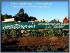 Angkhang_Sunrise01